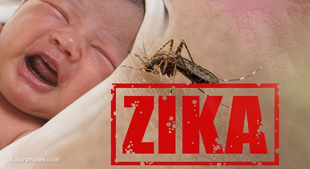 Zika is not a Threat to the Babies of the World